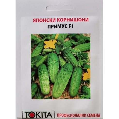 Семена корнишони Примус (Prymus)