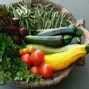Семена на зеленчуци
