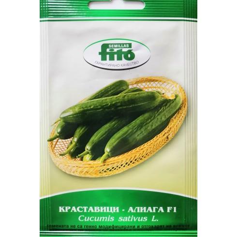 Семена на Краставици Алиага F1 - Cucumber Aliaga F1